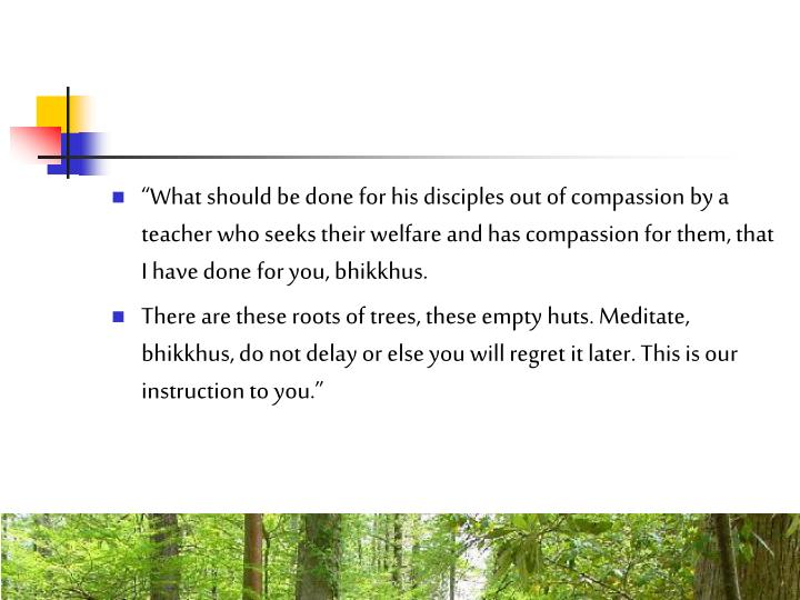 """""""What should be done for his disciples out of compassion by a teacher who seeks their welfare and has compassion for them, that I have done for you, bhikkhus."""
