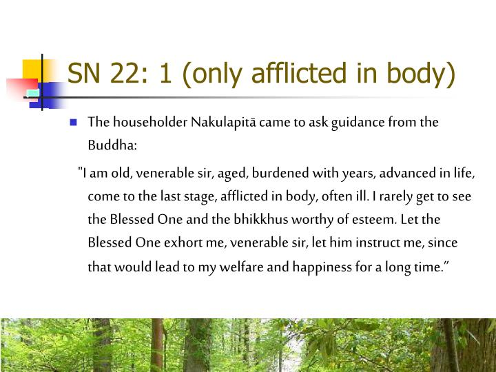 SN 22: 1 (only afflicted in body)