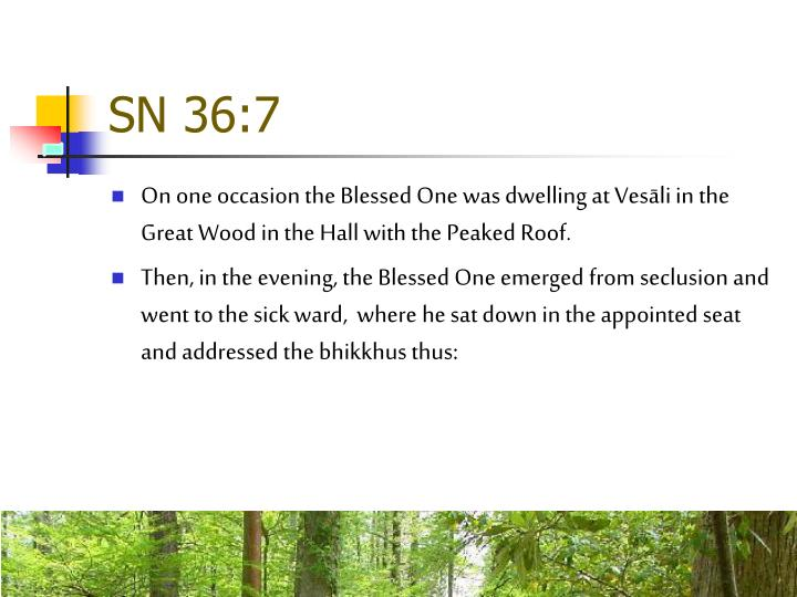 SN 36:7