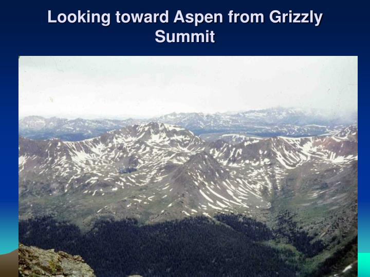 Looking toward Aspen from Grizzly Summit