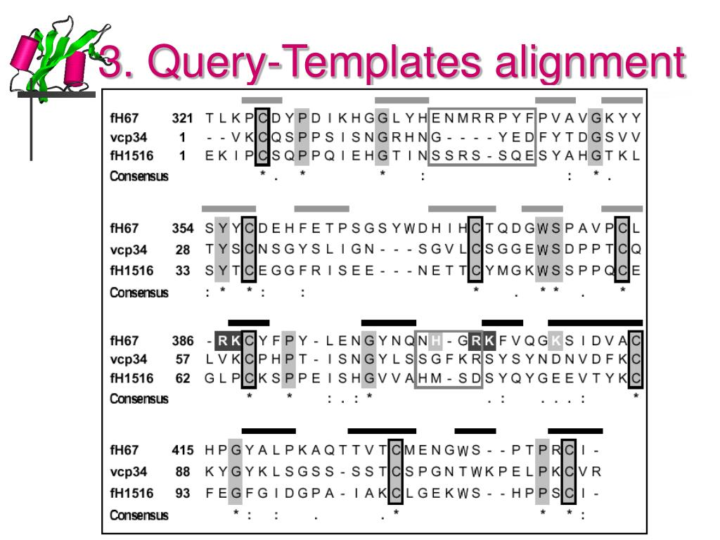 3. Query-Templates alignment