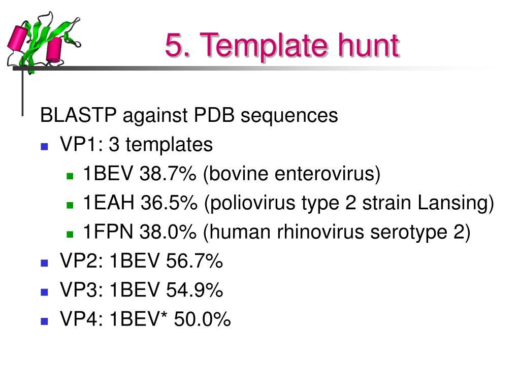 5. Template hunt