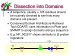 dissection into domains