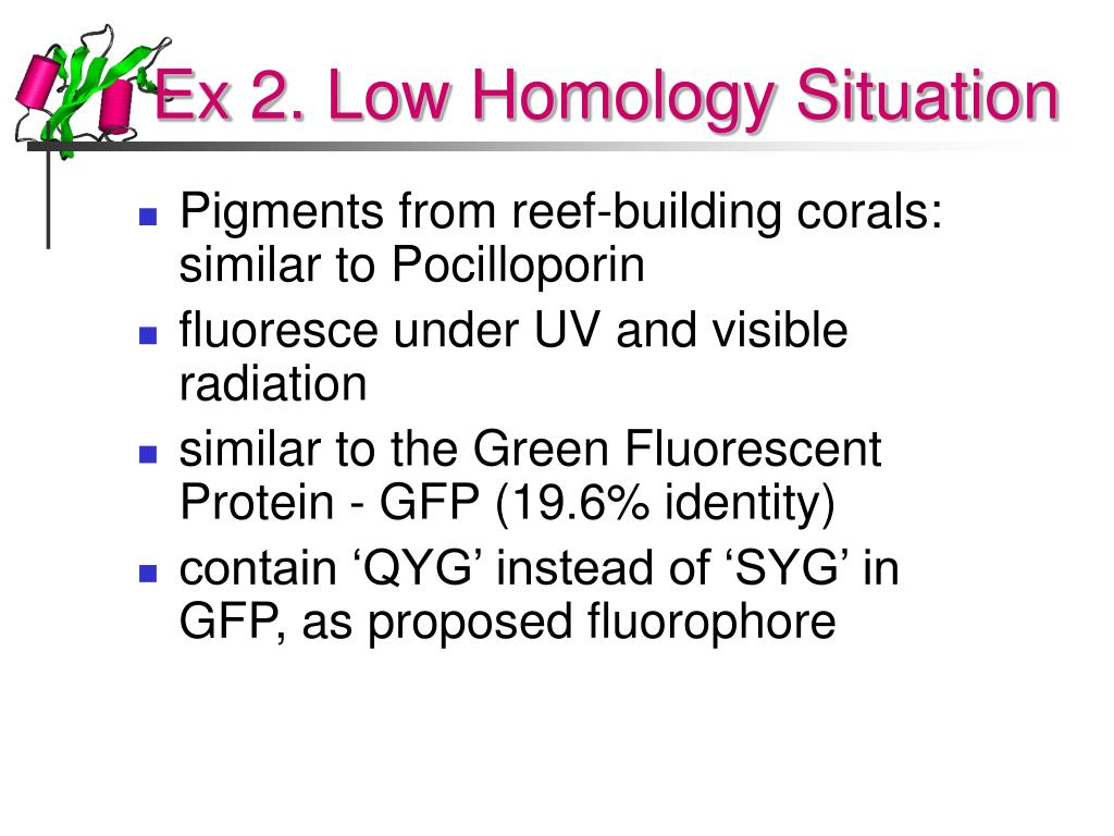 Ex 2. Low Homology Situation