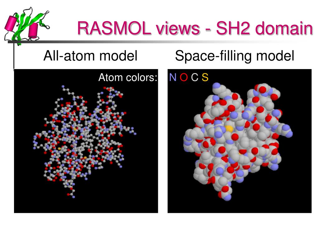RASMOL views - SH2 domain