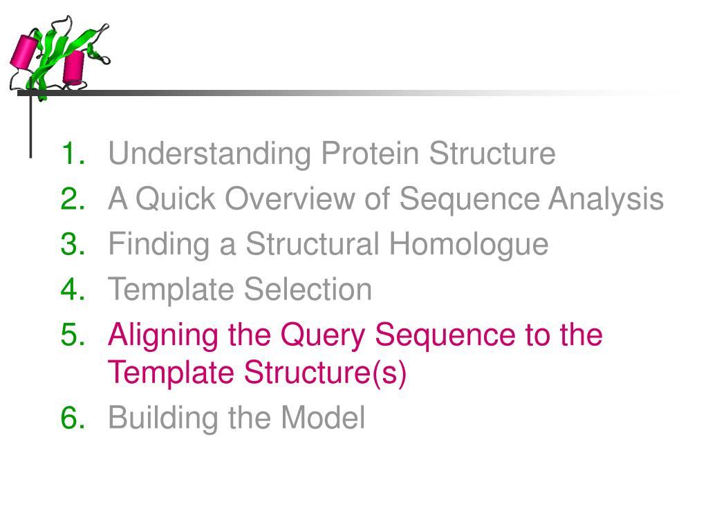 Understanding Protein Structure