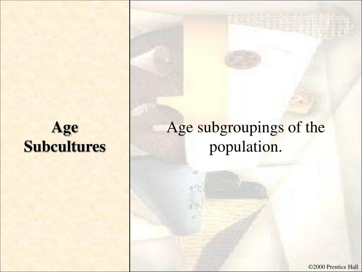 Age Subcultures