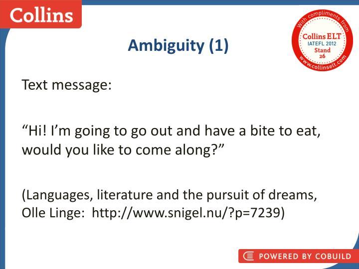 Ambiguity (1)