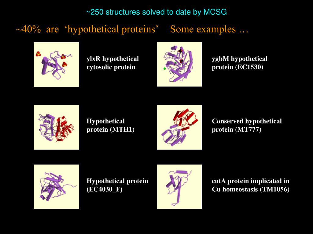 ylxR hypothetical cytosolic protein