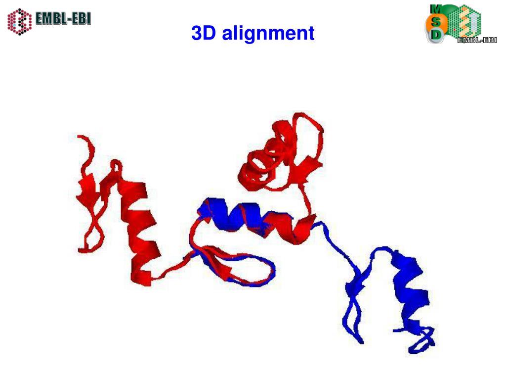 3D alignment