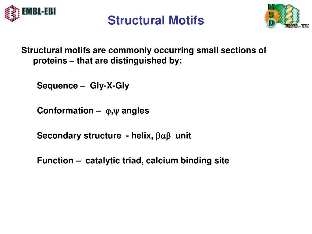 Structural Motifs