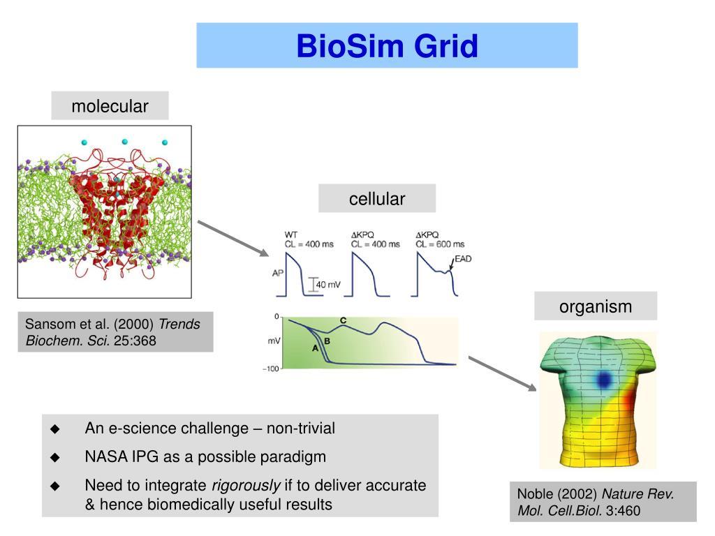 BioSim Grid