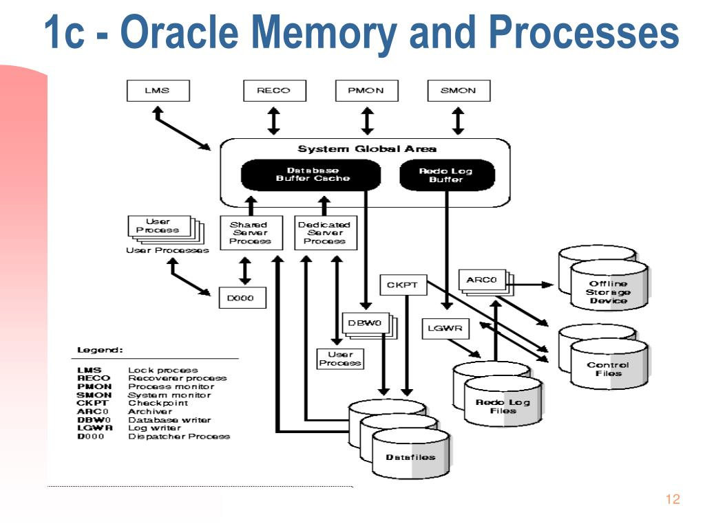 1c - Oracle Memory and Processes