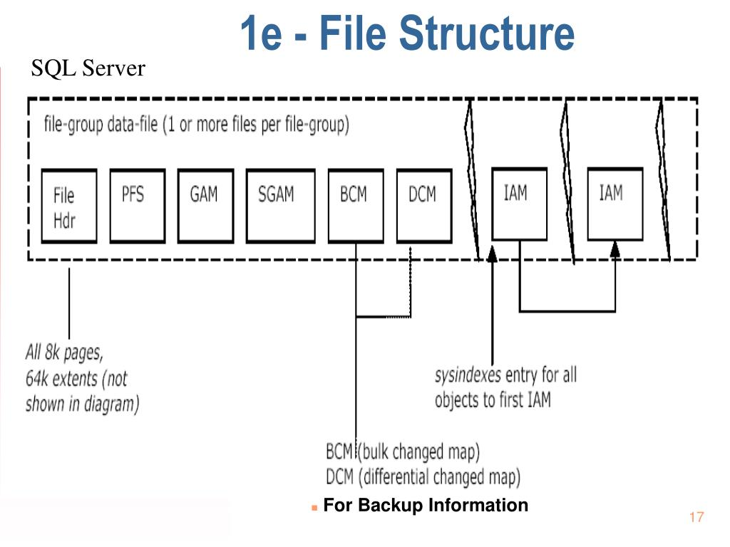 1e - File Structure
