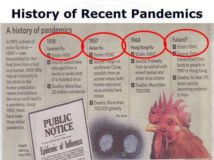 History of Recent Pandemics