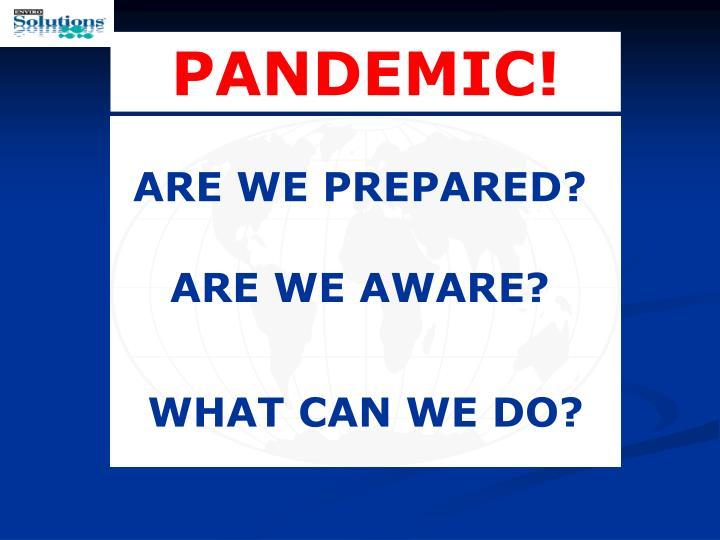 PANDEMIC!