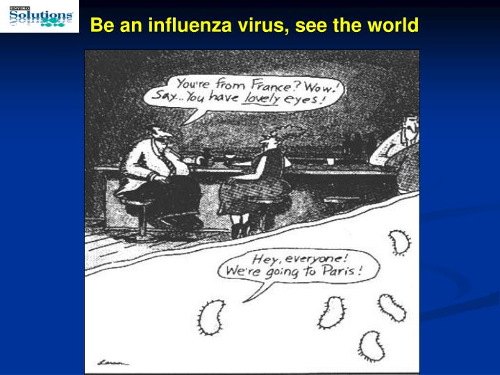 Be an influenza virus, see the world
