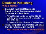 database publishing virtual names
