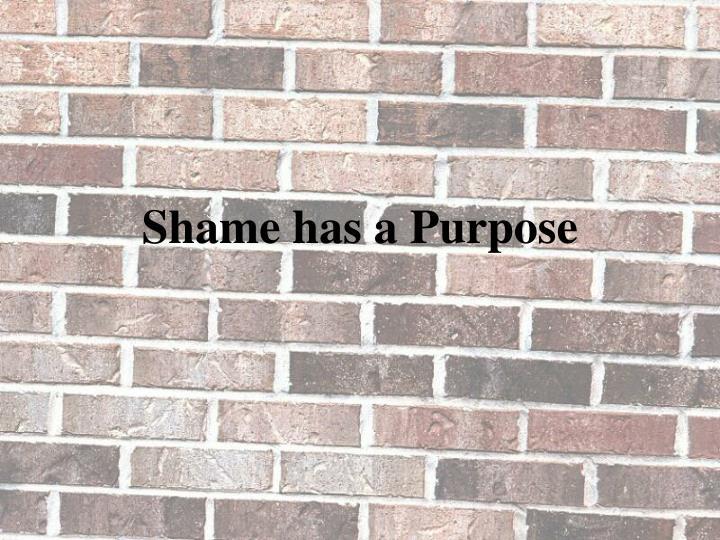 Shame has a Purpose