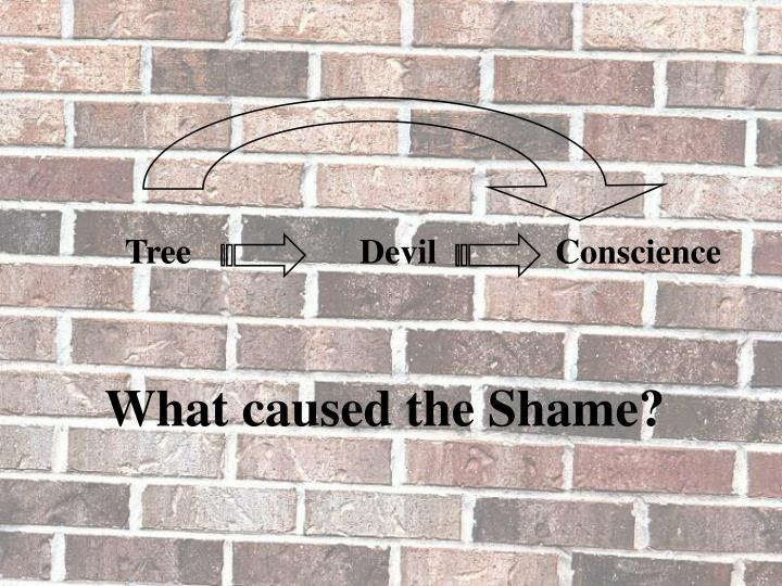 What caused the Shame?