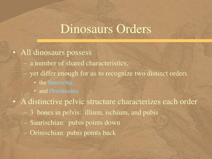 Dinosaurs Orders