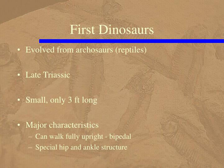 First Dinosaurs
