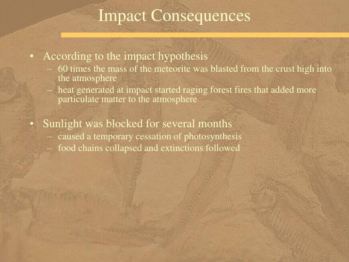 Impact Consequences