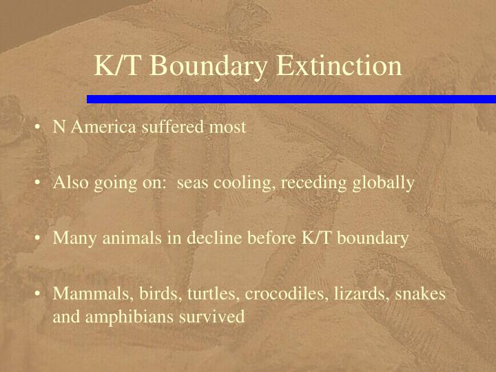 K/T Boundary Extinction