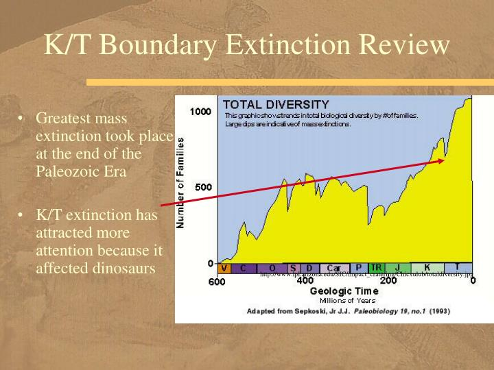 K/T Boundary Extinction Review