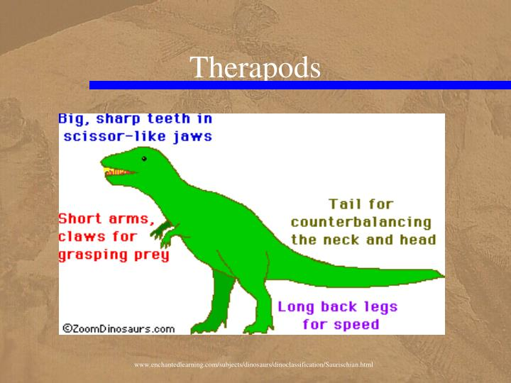 Therapods