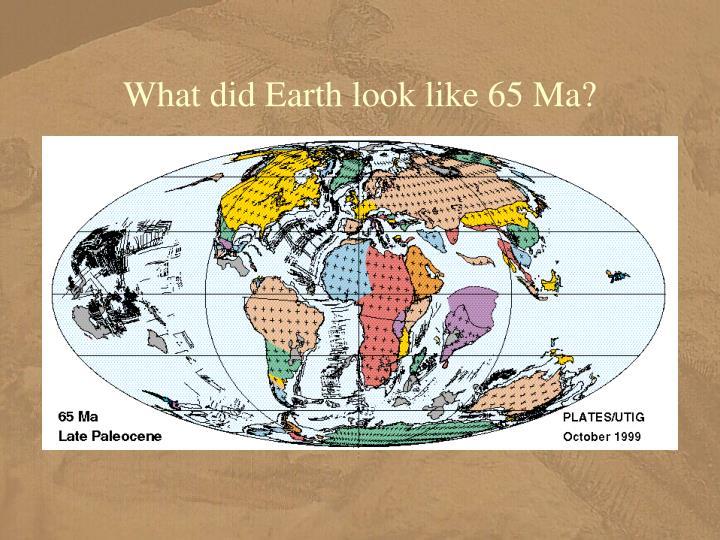 What did Earth look like 65 Ma?