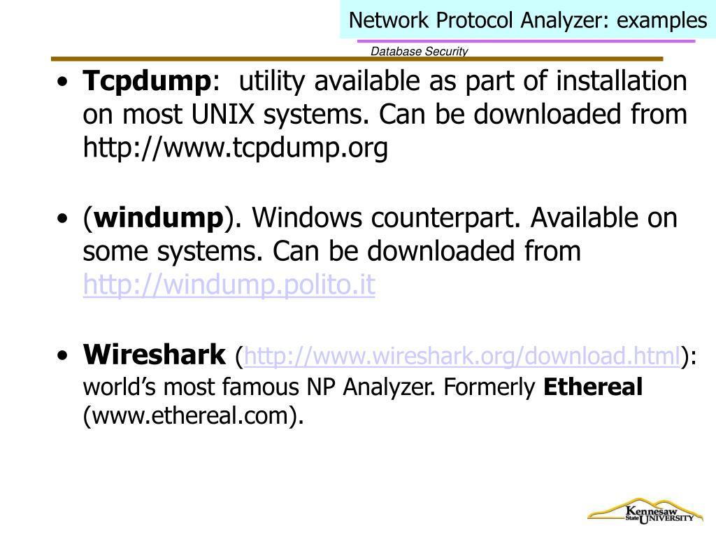 Network Protocol Analyzer: examples