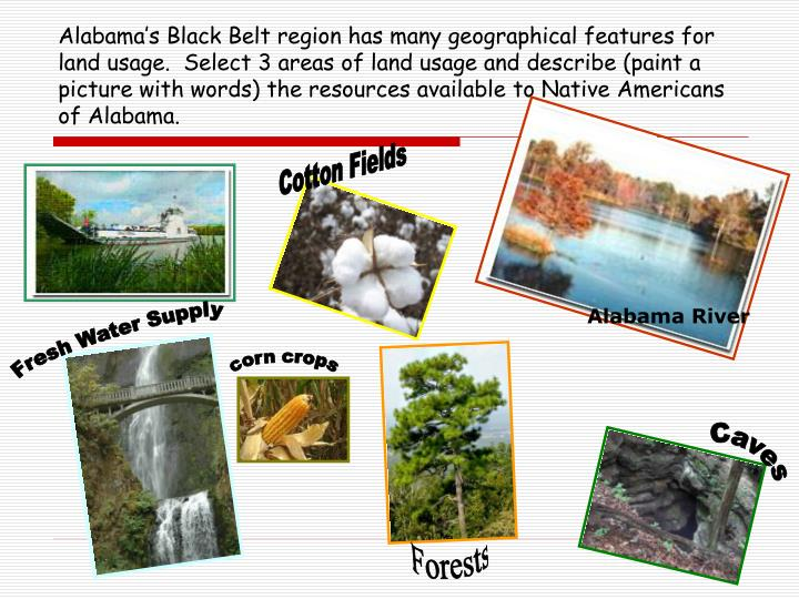 Alabama's Black Belt region has many geographical features for land usage.  Select 3 areas of land usage and describe (paint a picture with words) the resources available to Native Americans of Alabama.
