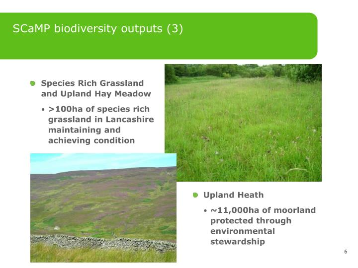SCaMP biodiversity outputs (3)