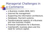 managerial challenges in e commerce