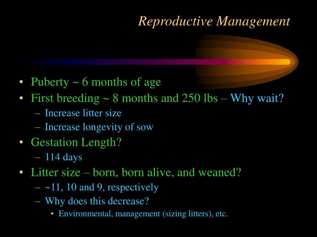 Reproductive Management
