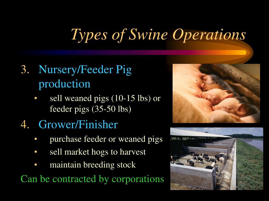 Types of Swine Operations