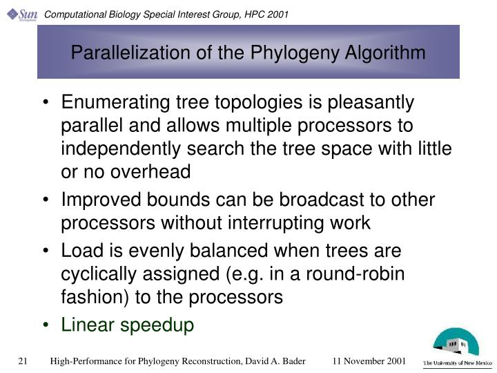 Parallelization of the Phylogeny Algorithm
