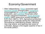 economy government