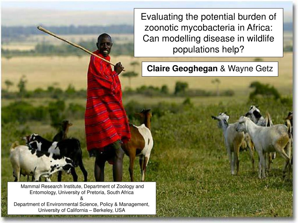 Evaluating the potential burden of zoonotic mycobacteria in Africa: Can modelling disease in wildlife populations help?
