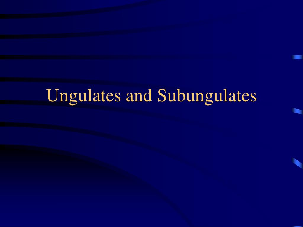 Ungulates and Subungulates