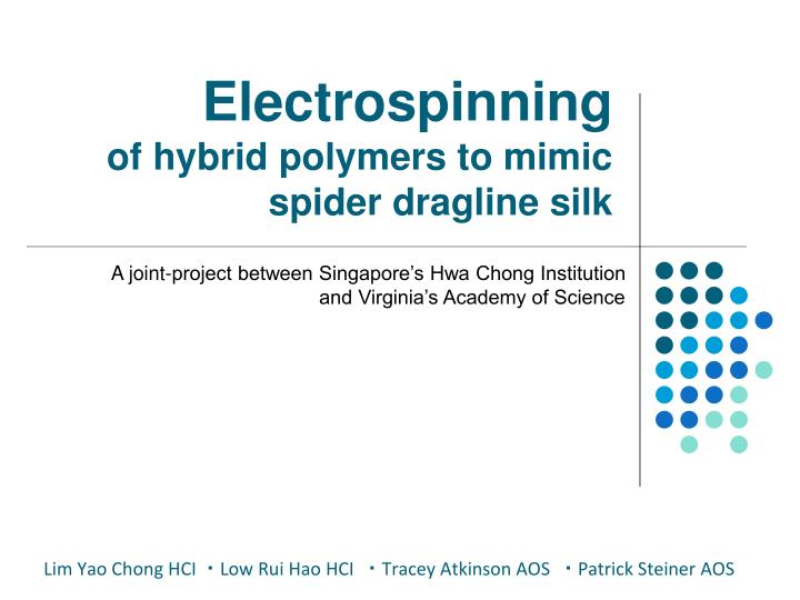 Electrospinning of hybrid polymers to mimic spider dragline silk