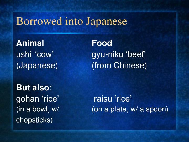 Borrowed into Japanese