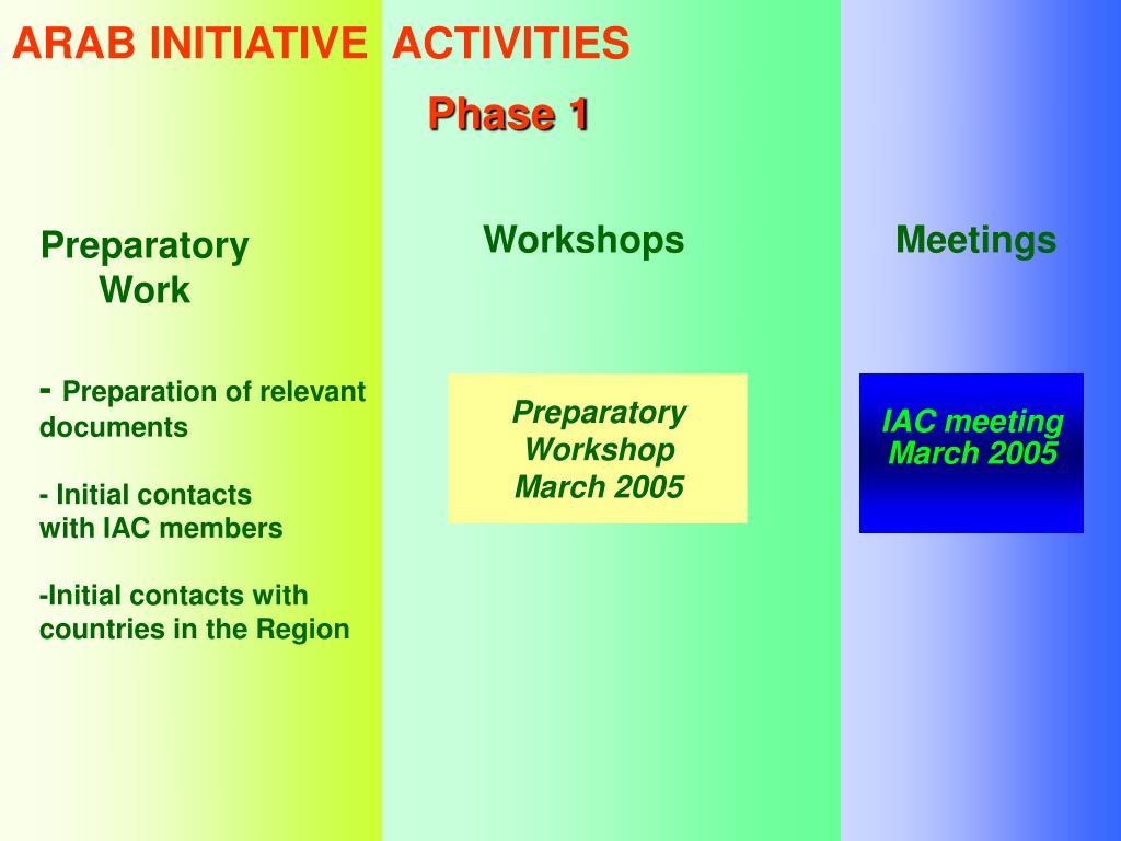 ARAB INITIATIVE  ACTIVITIES