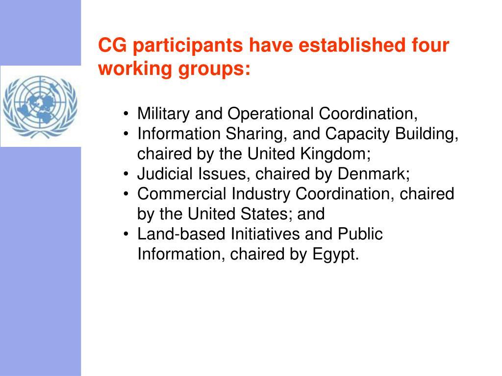 CG participants have established four working groups: