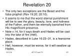revelation 2041