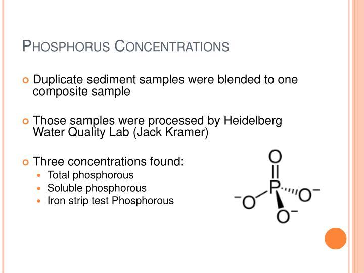 Phosphorus Concentrations