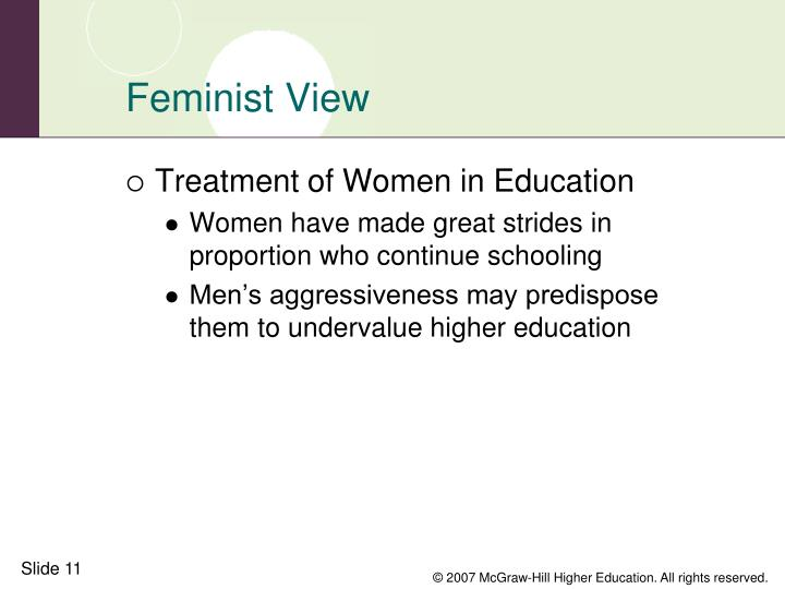 Feminist View