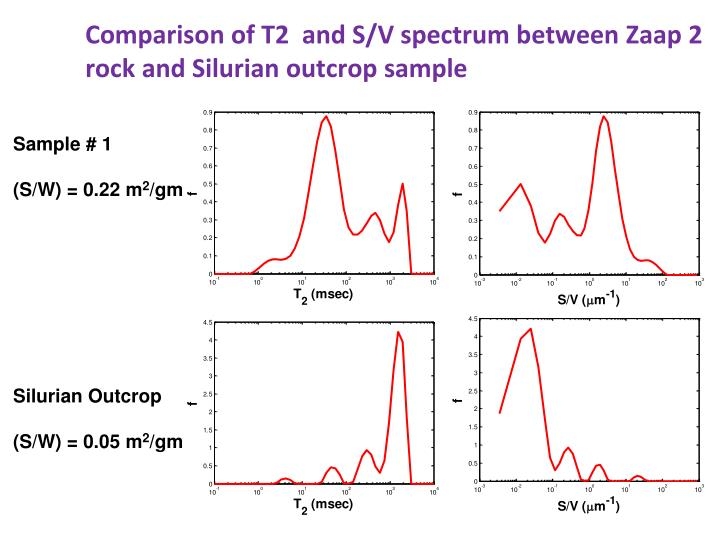 Comparison of T2  and S/V spectrum between