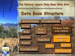 data base structure